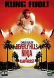 beverly_hills_ninja_die_kampfwurst_front_cover.jpg